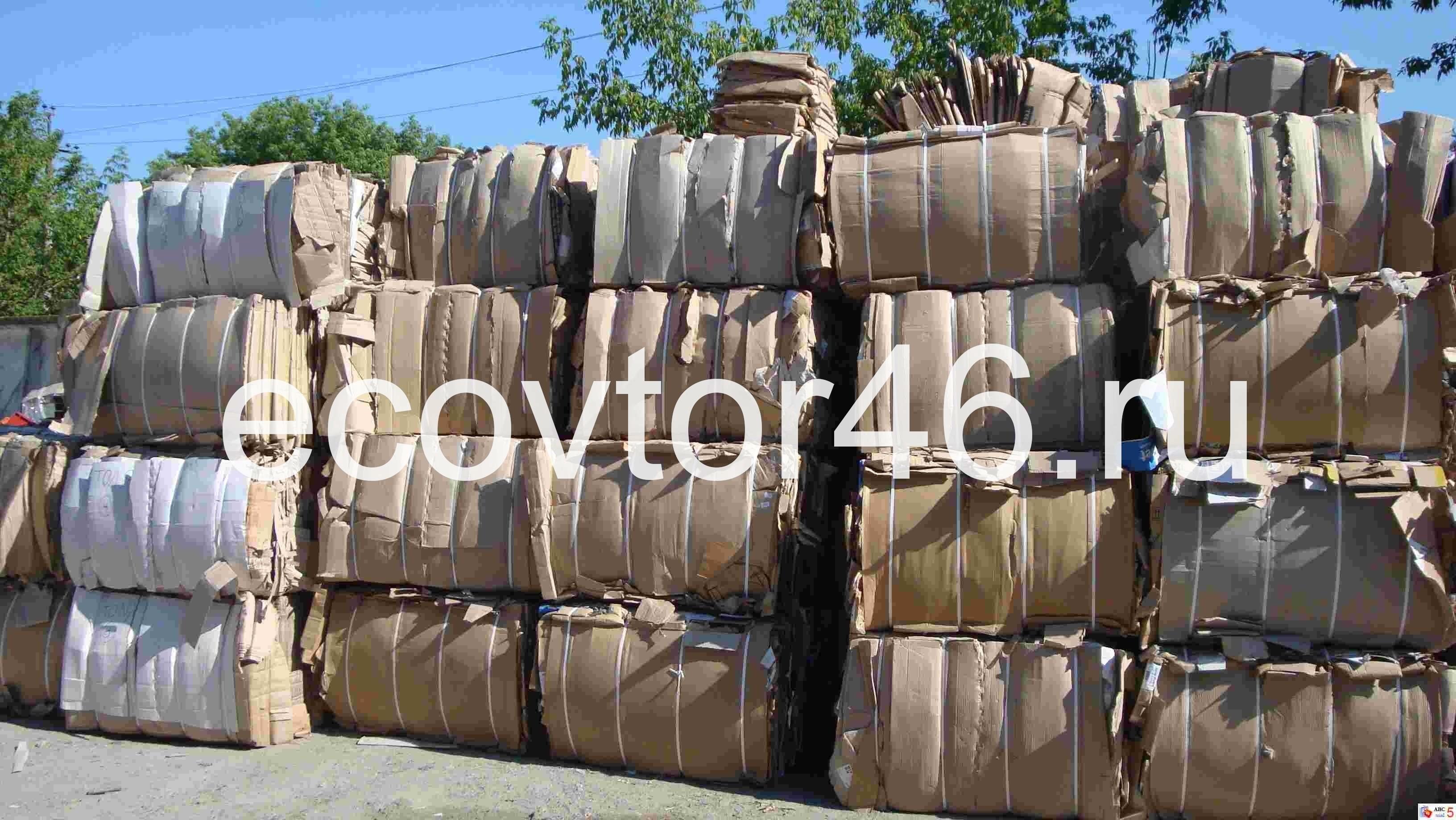 Макулатура цена за 1 кг курск вывоз макулатуры в туле бесплатно